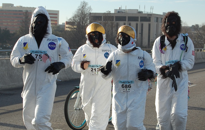 AGR 2013 NASA gorillas