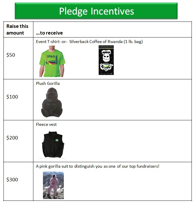 AGR 2015 Pledge Incentives_final