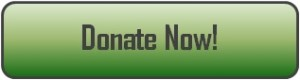 Donate Now Button_green2